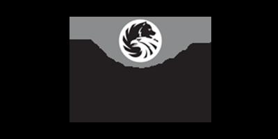 logo-russian-standard